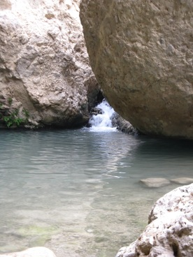 Isolated pools provide a relaxing place for the hikers to take a dip on the way unto David falls