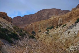 The surroundings of Ein Gedi