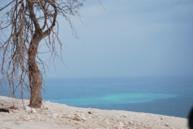 Dead sea view from SPNI youth hostel