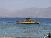 Coral 2000- Glass bottomed boat..