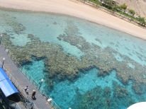 Coral reefs as seen from the observatory tower