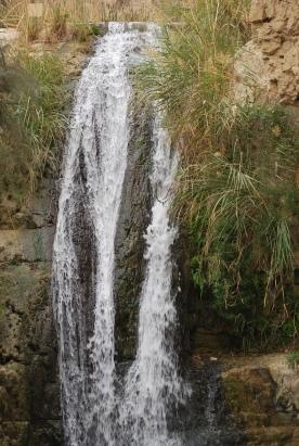 Ein Gedi spring water