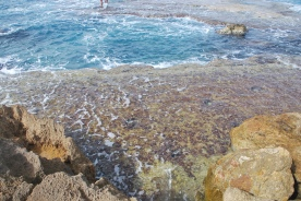 Tidal pools at Achziv